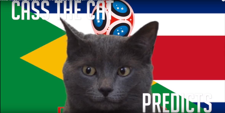 Tiên tri Cass dự đoán Brazil vs Costa Rica, 19h ngày 22/6