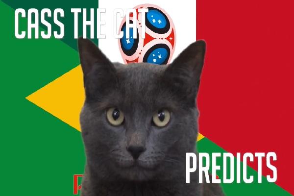 Tiên tri Cass dự đoán Brazil vs Mexico, 21h ngày 2/7