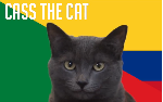 Tiên tri Cass dự đoán Senegal vs Colombia (21h, 28/6)