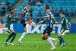 Nhận định Gremio vs Palmeiras: Tiếp chuỗi bất bại