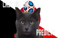 Tiên tri Cass dự đoán Bỉ vs Nhật Bản, 1h ngày 3/7