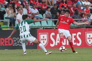 TRỰC TIẾP Sevilla vs Benfica, 23h00 ngày 21/7